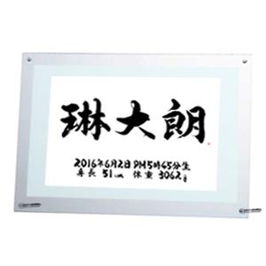 命名書 クリアータイプ A4サイズ(11) 琳太朗