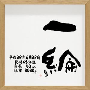 命名書 シンプルタイプ Sサイズ ナチュラル(18) 一綸