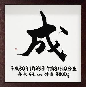 命名書 シンプルタイプ Sサイズ ブラウン(28) 成