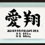 命名書 立体タイプ B4サイズ ブラウン(9)愛翔